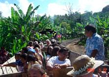 Kauai Sugar Train