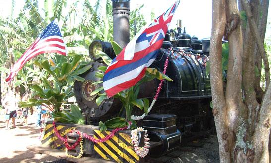 The Locomotives of Grove Farm